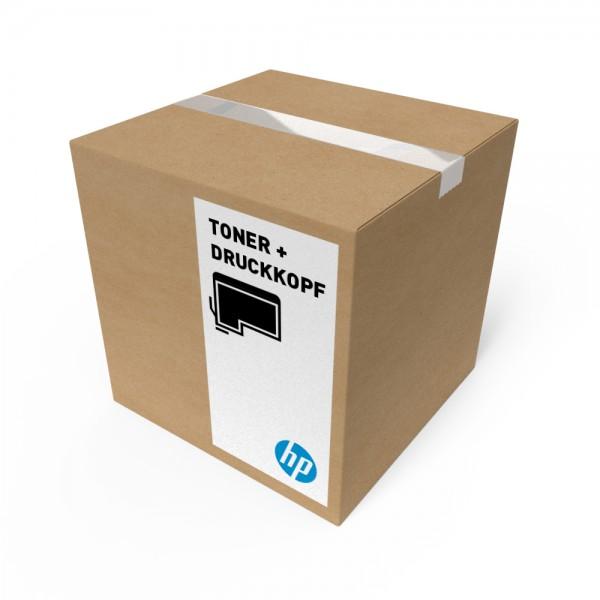 ORIGINAL HP Tintenpatrone Matte K P2V92A 766 300ml